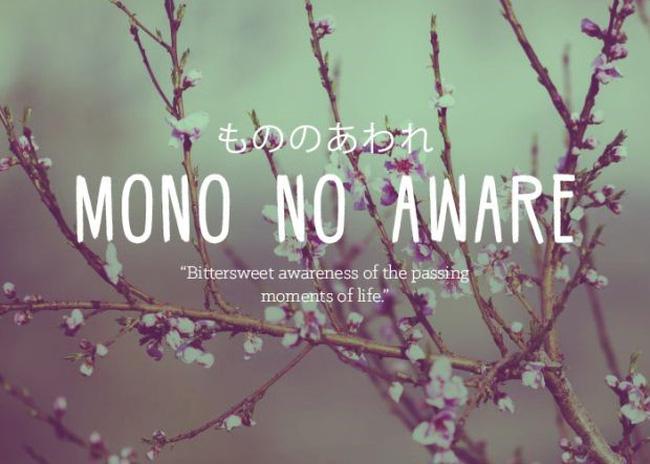Mono No Aware. Ảnh: cafef.vn