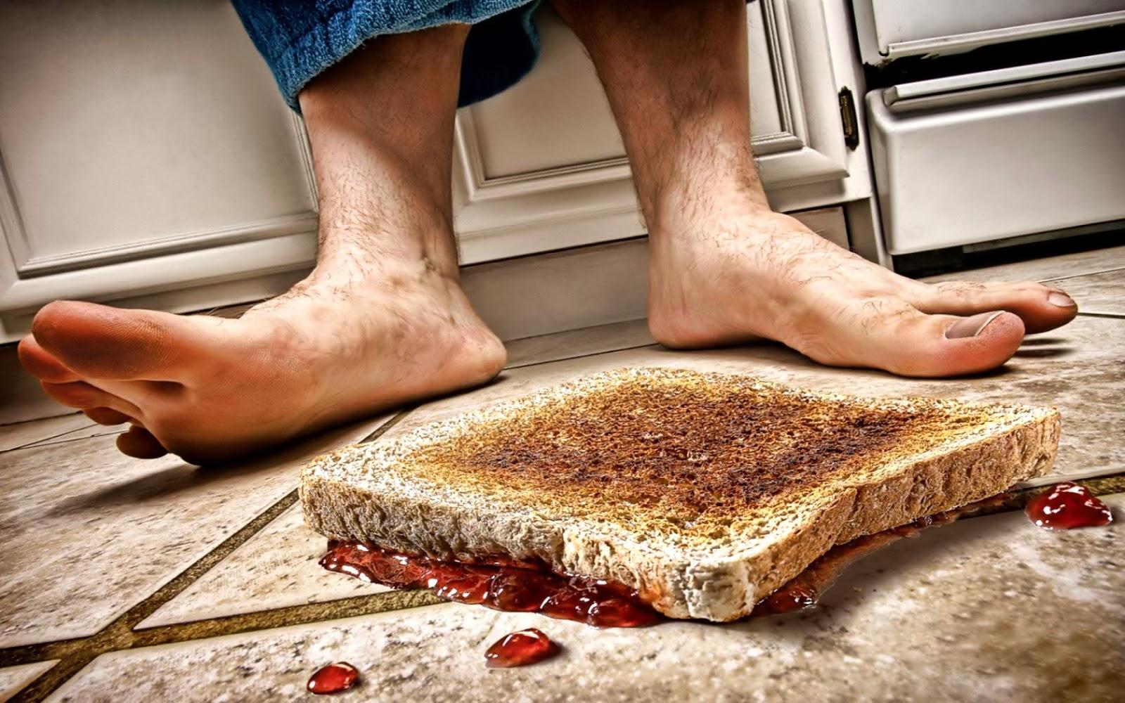 Hình Định luật Murphy - Định luật bánh mì phết bơ