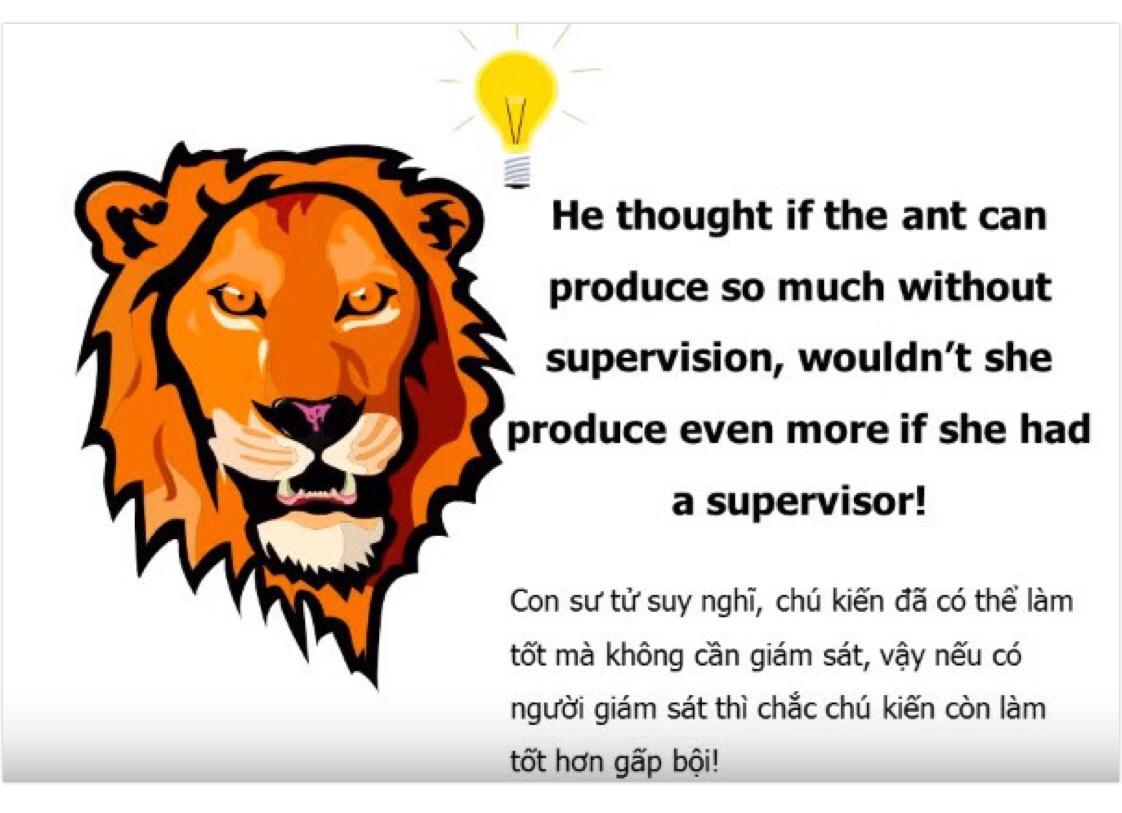 Câu chuyện chú Kiến thợ và boss Sư tử